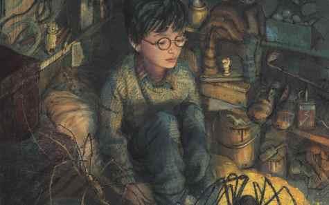 Harry Potter Jim Kay
